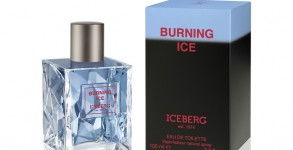 Iceberg's Burning Ice